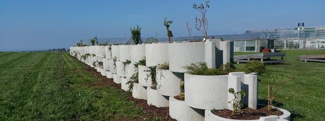 Bilde av en grønn vegg